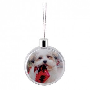 Adventa Circle Photo Ornament - Clear